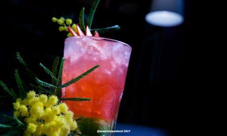beverage-cocktails red